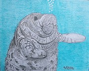 Gerald Strine - Manatee close encounter