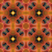 Mystical Prints - Mandala 124 Print by Terry Reynoldson
