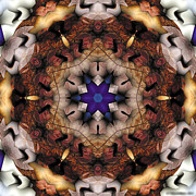 Buddhism Digital Art - Mandala 16 by Terry Reynoldson