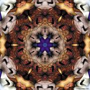 Mandala 16 Print by Terry Reynoldson