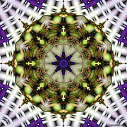 Healing Framed Prints - Mandala 21 Framed Print by Terry Reynoldson