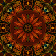 Stuart Turnbull Metal Prints - Mandala 67 Metal Print by Stuart Turnbull