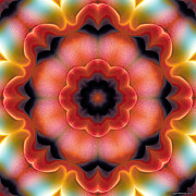 Contemplation Prints - Mandala 91 Print by Terry Reynoldson
