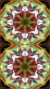 Sacred Geometry Prints - Mandala 97 for iPhone Double Print by Terry Reynoldson
