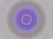 Mandala Photos - Mandala Blue by Anika Kanter