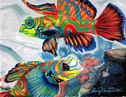 Mandarin Drawings - Mandarin Fish by Stacey Crummett