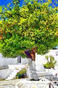Mandarine Tree Painting Print by Magomed Magomedagaev