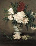Interior Still Life Photo Metal Prints - Manet, Édouard 1832-1883. Peonies Metal Print by Everett