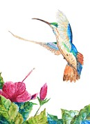 Mango Painting Originals - Mango Hummingbird by Patricia Beebe