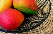 Hawaiian Food Photos - Mango in a Black Wire Basket by James Temple