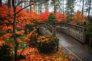 Manito Park Framed Prints - Manito Park Spokane Framed Print by James Richman