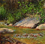 Colorado Mountain Stream Paintings - Manitou creek by Greg Clibon