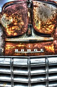 Rusted Cars Framed Prints - Mans Best Friend- Auto Personalities #5 Framed Print by Dan Stone