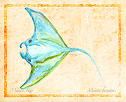 Biological Mixed Media - Manta Ray by William Depaula