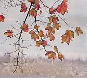Autumn Landscape Tapestries - Textiles Posters - Maple in gray sky Poster by Carolyn Doe