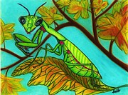 Tree Leaf Pastels Framed Prints - Maple Mantis Framed Print by Alika Crooks