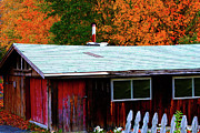 Old Country Roads Digital Art - Maple Shack by Gail Barsh