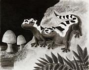 Jeanette K - Marbled Salamanders on Rock