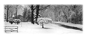 Brian Wallace Art - March Snow - Pano by Brian Wallace