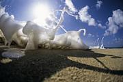 Marching Foam Print by Sean Davey