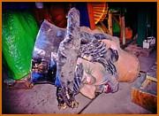 John Malone - Mardi Gras Left Overs