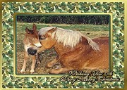 Mare Drawings - Mare And Mule Foal Christmas Card by Olde Time  Mercantile