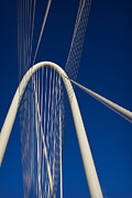 Dfw Posters - Margaret Hunt Hill Bridge Poster by Elena Nosyreva