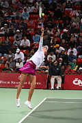 Celeb Art - Maria Sharapova serves in Doha by Paul Cowan