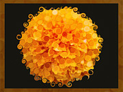 Witkowski Mixed Media Prints - Marigold Magic Abstract Flower Art Print by Omaste Witkowski
