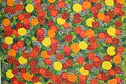 Jilly Curtiss - Marigolds Dubai In Bloom...