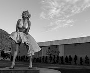 Marilyn Photos - Marilyn in the Morning BW by John Daly
