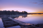 Country Cottage Photos - Marina at Dawn by Charline Xia