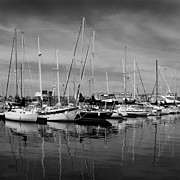 Water Vessels Digital Art Posters - Marina Boats In Victoria British Columbia Black And White Poster by Ben and Raisa Gertsberg