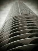 Chicago Black White Posters - Marina City Chicago IL Poster by Christine Till