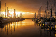 Puget Sound Photos - Marina Golden Sunset by Mike Reid