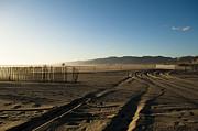 Mark In The Sand - Santa Monica Beach Print by Oscar Karlsson