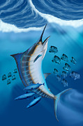 Game Fish Digital Art Posters - Marlin Fish Poster by Corey Ford