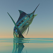 Marlin Digital Art Framed Prints - Marlin Sport Fish Framed Print by Corey Ford