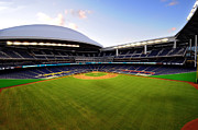 Marlins Prints - Marlins Park Print by Richard Fraginals