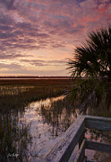 Lowcountry Prints - Marsh Dock Print by Phill  Doherty