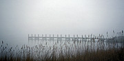 Scenic Woodlands Prints - Marsh Dock Print by Skip Willits