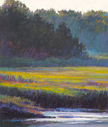 Kayaking Pastels Posters - Marsh Land Poster by Ed Chesnovitch