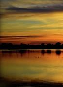 Bonfire Photography - Marsh Rise Tile 1