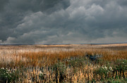 Scenic Woodlands Prints - Marsh Storms Print by Skip Willits