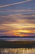 Lowcountry Digital Art Prints - Marsh Sunset Print by Phill  Doherty