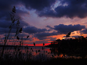 Marsh Sunset Print by Raymond Salani III