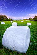 Startrails Posters - Marshmallow Fields and Stars Poster by Ryan Moore