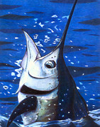 Sailfish Drawings Posters - Marvin Sailfish Poster by Karen Rhodes