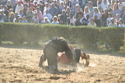 Maryland Renaissance Festival - Jousting And Sword Fighting - 1212102 Print by DC Photographer