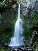 Christopher Fridley Prints - Marymere Falls Print by Christopher Fridley